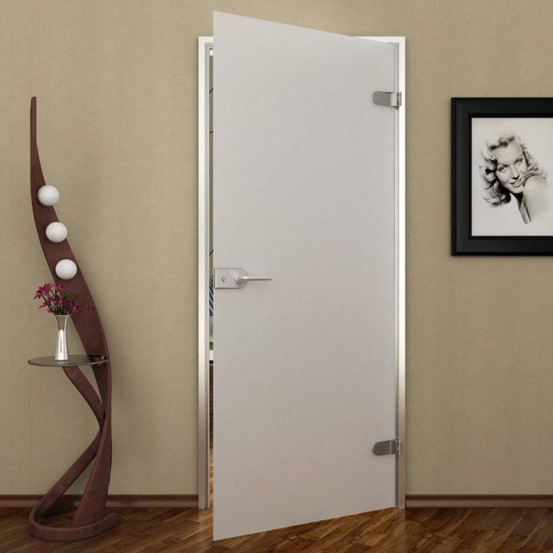 Стеклянные межкомнатные двери из матового стекла фото