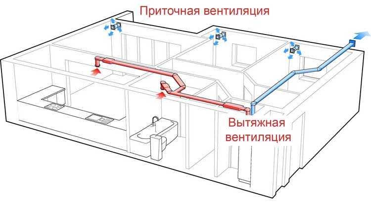 Приточно-вытяжная вентиляция в частном доме может быть организована таким образом: приточка децентрализованная, вытяжка — централизованная