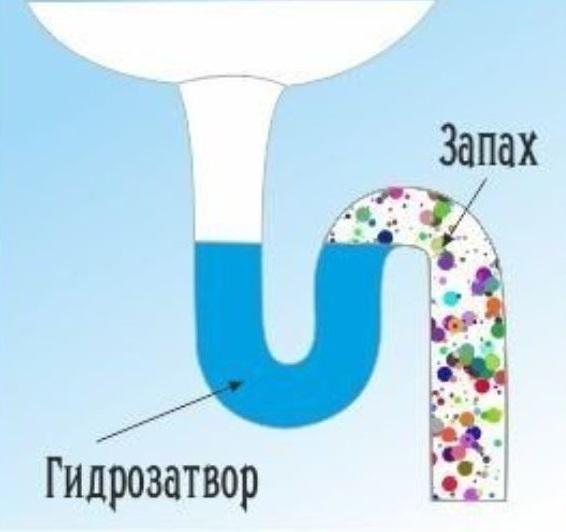 Как поменять сифон под раковиной, устройство гидрозатвора