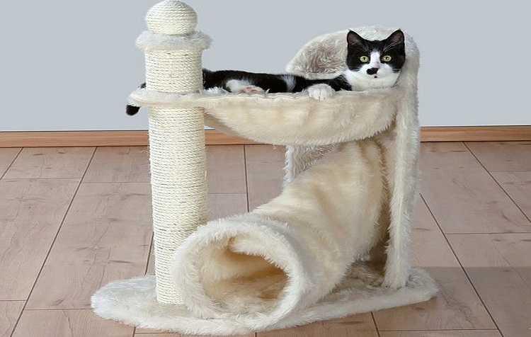 Комбинация гамака и трубы — один из «лайт» вариантов уголка для кошки