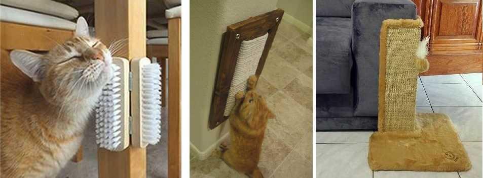 Щетки — очень удобная вещь чтобы почесаться, поластиться, когда хозяина нет рядом. Когтеточки позволяют защитить мебель от кошачьих когтей — это дешевле, чем покупать антивандальный диван