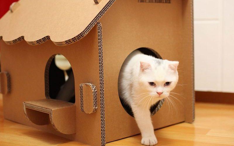Как сделать кошачий домик своими руками